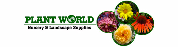 Home Plant World Inc New Mexico S