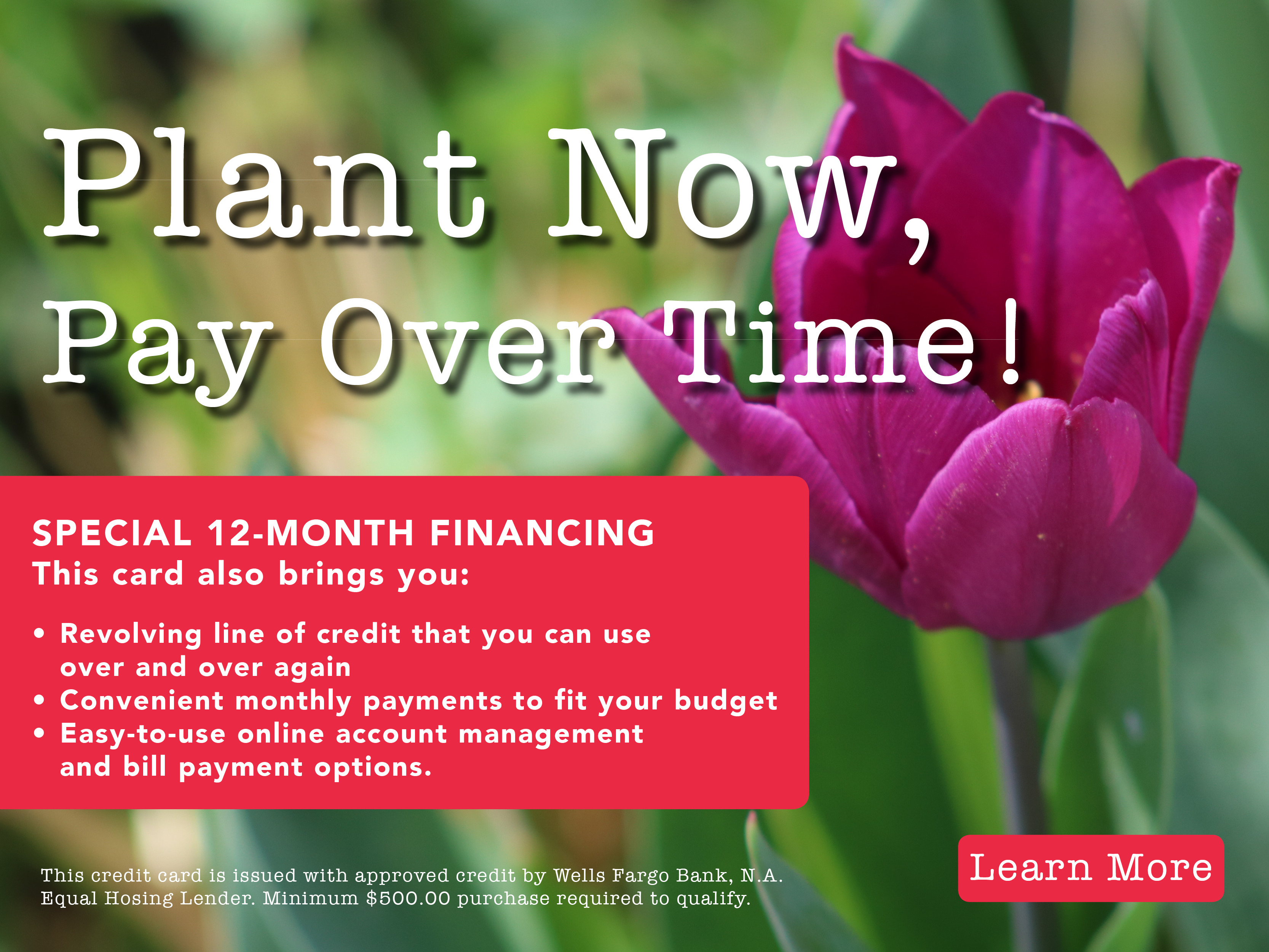 Plant World Plant Now Pay Later-1