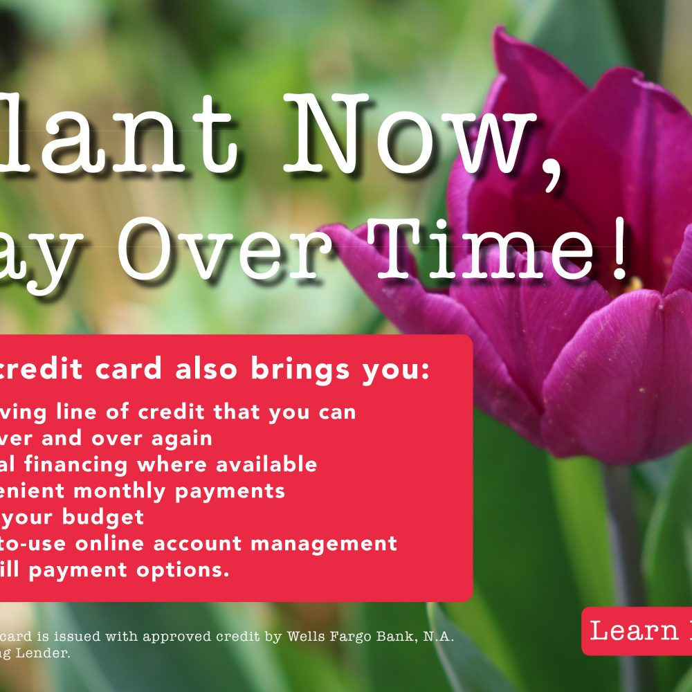 Plant World Plant Now Pay Later-2